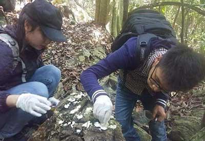 Nhóm CordyHappy khảo sát đa dạng sinh học nấm dược liệu ở Vườn Quốc gia Ba bể