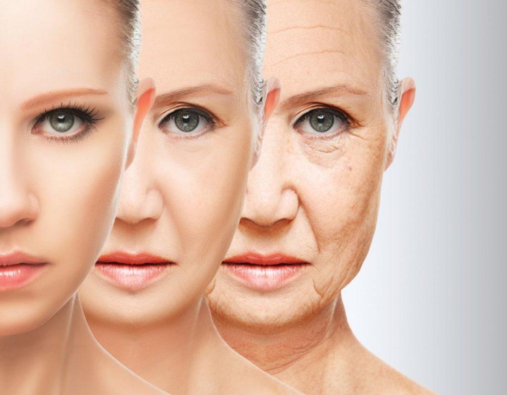 Tác dụng của đông trùng hạ thảo với người già - chống lão hóa
