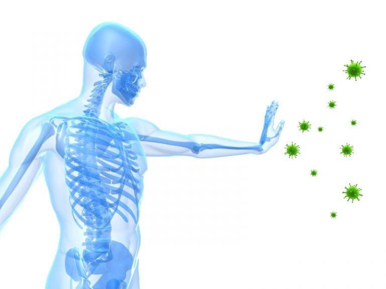Gạo lứt rang giúp nâng cao hệ miễn dịch