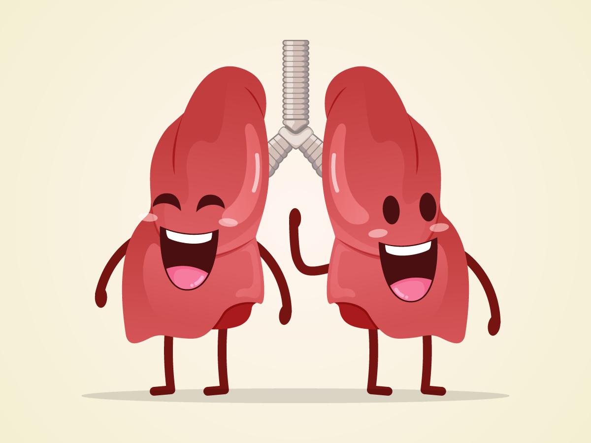 Đông trùng hạ thảo có tác dụng tốt cho phổi